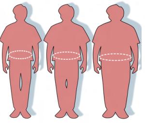 L' inflammation cellulaire et la prise de poids - Études d'Harvard
